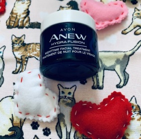 anew nighttime with cats
